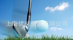 高爾夫球專用交聯劑