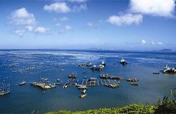 休闲度假之上海——嵊泗枸杞岛 2日